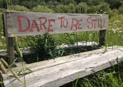 dare to be still