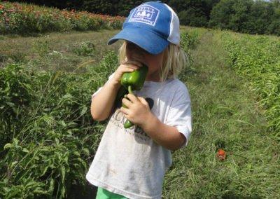 future CSA farmer