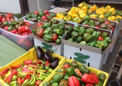 pepper-overload-1