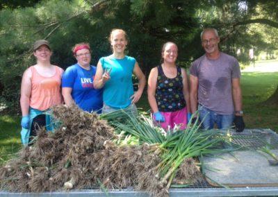 Tues. garlic crew