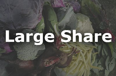 Large CSA Share Product Image