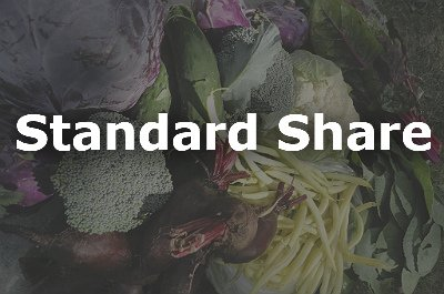 Standard Share Product Image