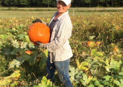 Mays warty pumpkin