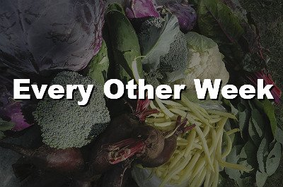 Every Other Week CSA Share